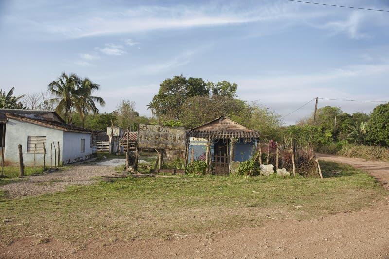 Vecchia cabina di ceppo in una campagna cubana a distanza ed in un ambiente naturale Molti cubani vivono in capanne di legno sull fotografia stock
