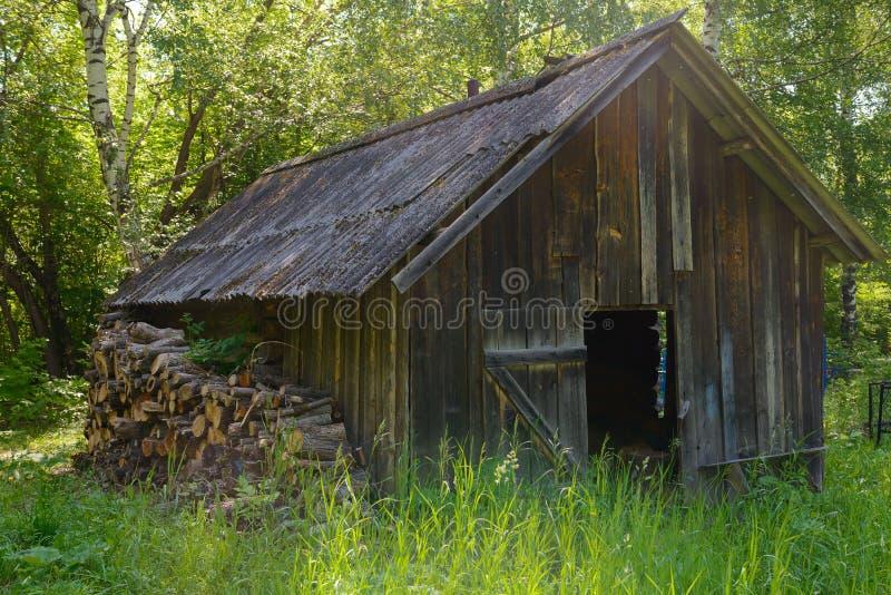 Vecchia capanna di legno con legna da ardere vicino alla parete nella foresta fotografia stock libera da diritti