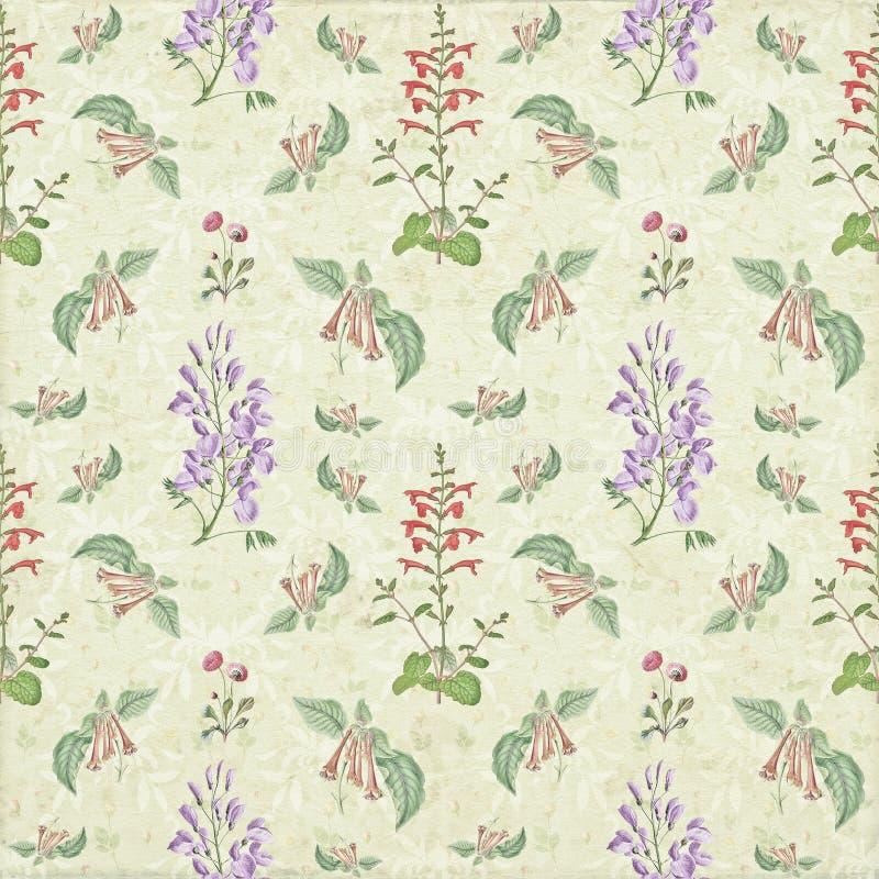 Vecchia carta da parati floreale d'annata della carta del modello di ripetizione di botanica illustrazione vettoriale