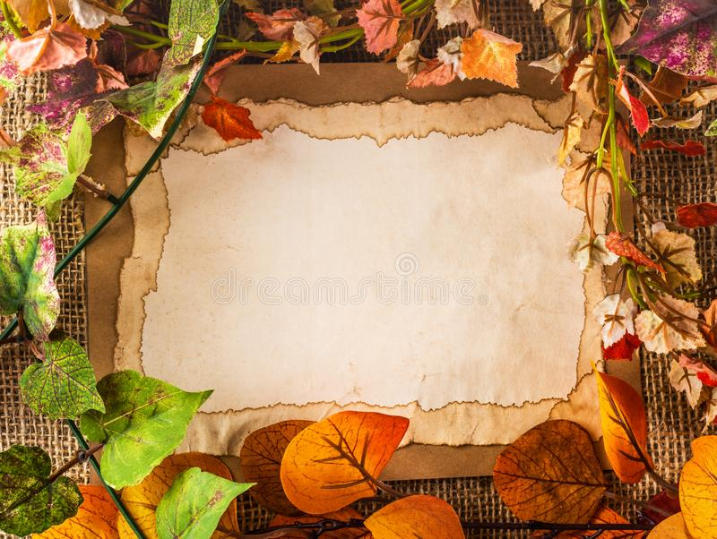 Vecchia carta fra le foglie false immagine stock