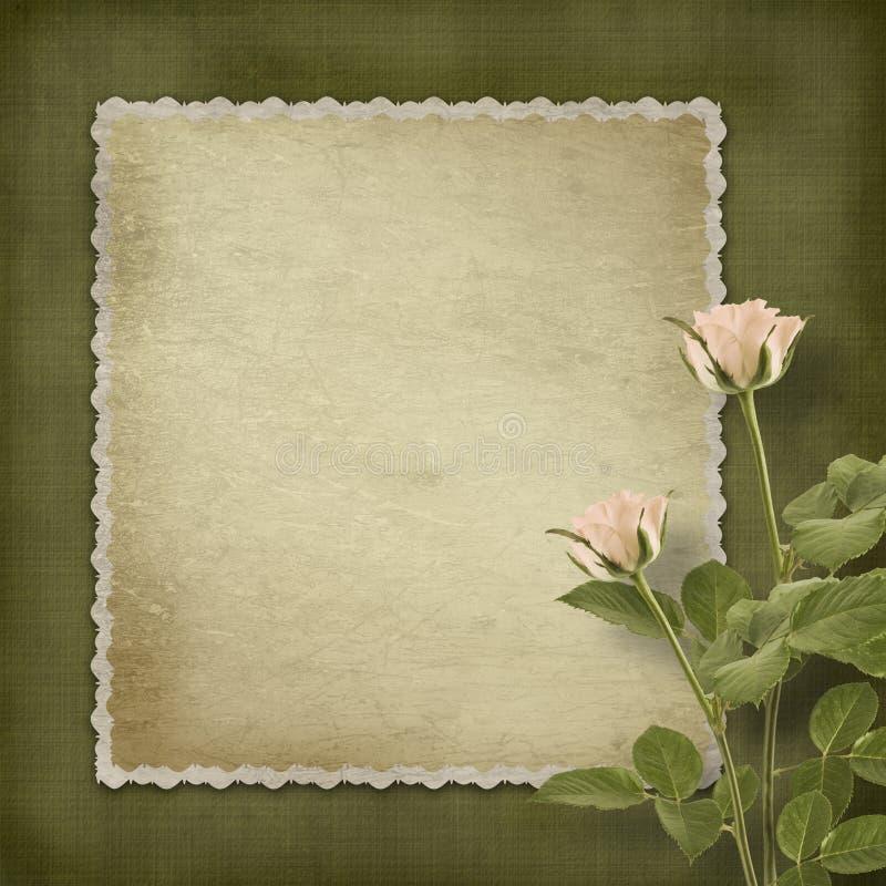 Vecchia cartolina dell'annata con le rose fotografia stock libera da diritti