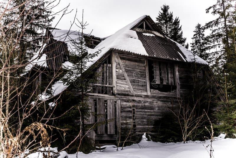 Vecchia casa abbandonata spaventosa nella foresta fotografia stock libera da diritti