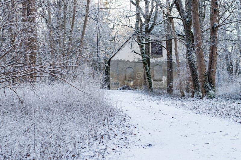 Vecchia casa concreta in foresta nevosa fotografie stock