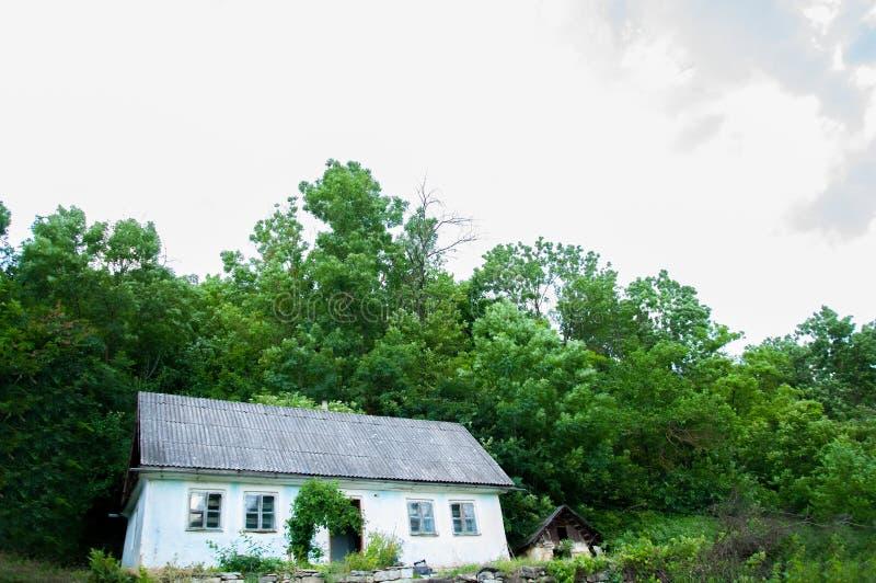 Vecchia casa di legno blu in mezzo alla foresta è l'estate fuori fotografie stock libere da diritti