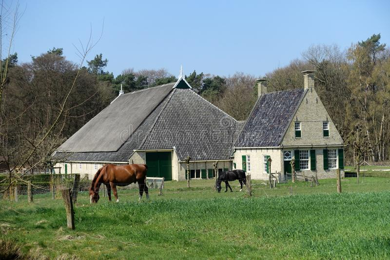 Vecchia casa olandese dell'azienda agricola immagini stock libere da diritti