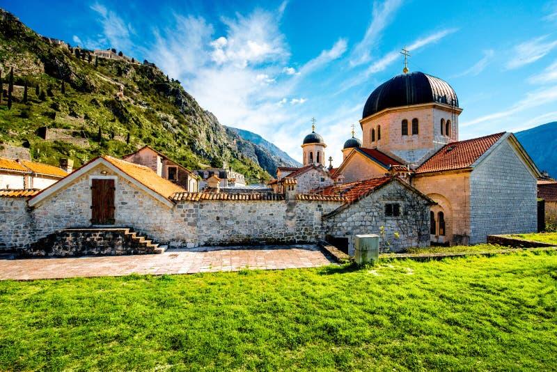 Vecchia città di Cattaro nel Montenegro immagini stock libere da diritti