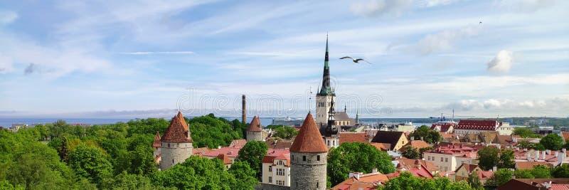 Vecchia città - Tallinn immagini stock
