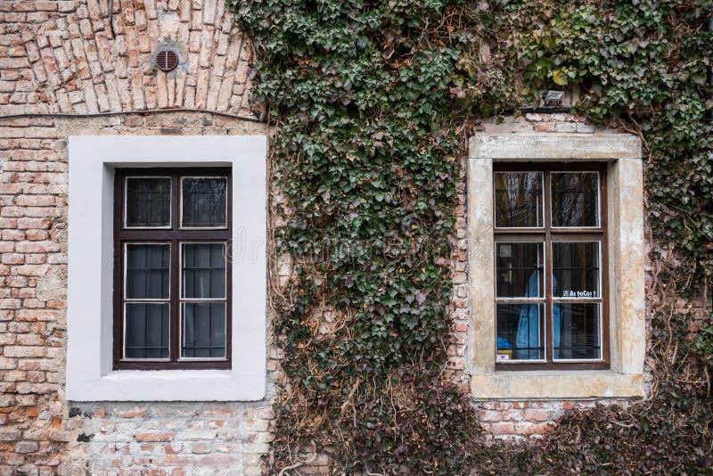 Vecchia costruzione con due finestre e le piante verdi immagini stock