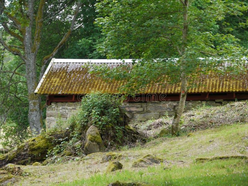 Vecchia costruzione con il tetto muscoso immagini stock