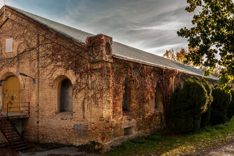 Vecchia costruzione del teatro in Timisoara immagine stock libera da diritti