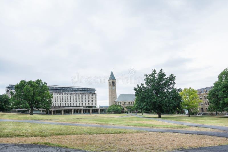 Vecchia costruzione dell'università a Cornell fotografia stock libera da diritti