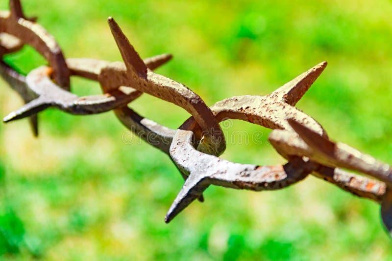 Vecchia e catena arrugginita con gli spigoli contro lo sfondo di erba verde, divieto di entrata, fondo di erba verde con SH fotografia stock