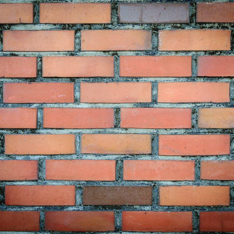Vecchia e parete di mattoni rossi d'annata fotografie stock