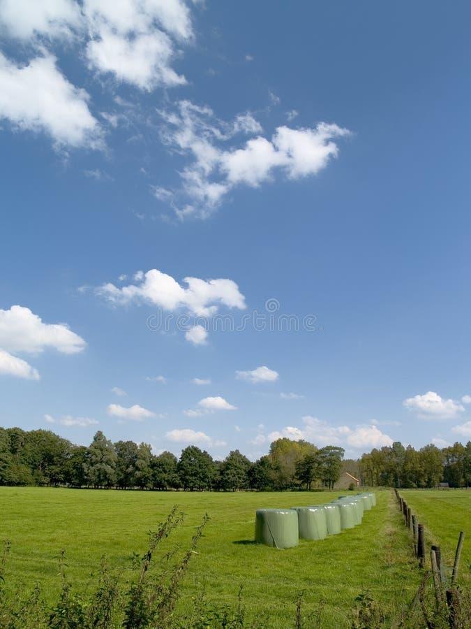Vecchia fattoria con le pile del fieno. immagine stock