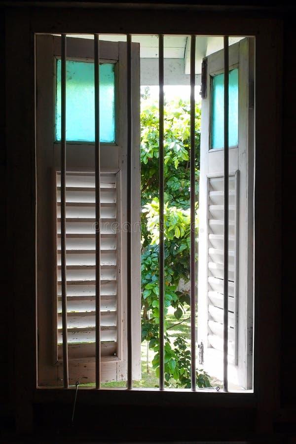 Vecchia finestra di legno con la vista del giardino fotografia stock libera da diritti