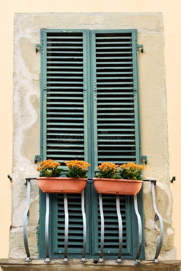 Vecchia finestra tradizionale italiana con i fiori pisa L'Italia fotografie stock