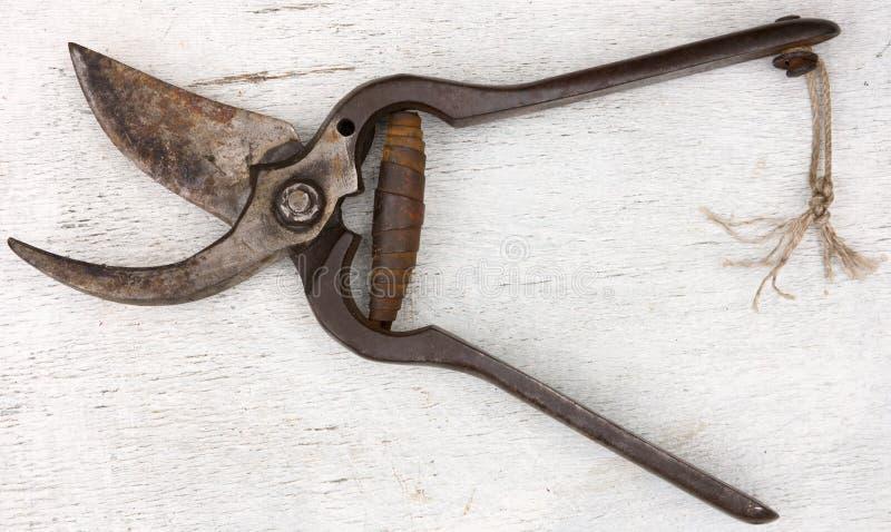 Vecchia lama del giardino fotografia stock libera da diritti