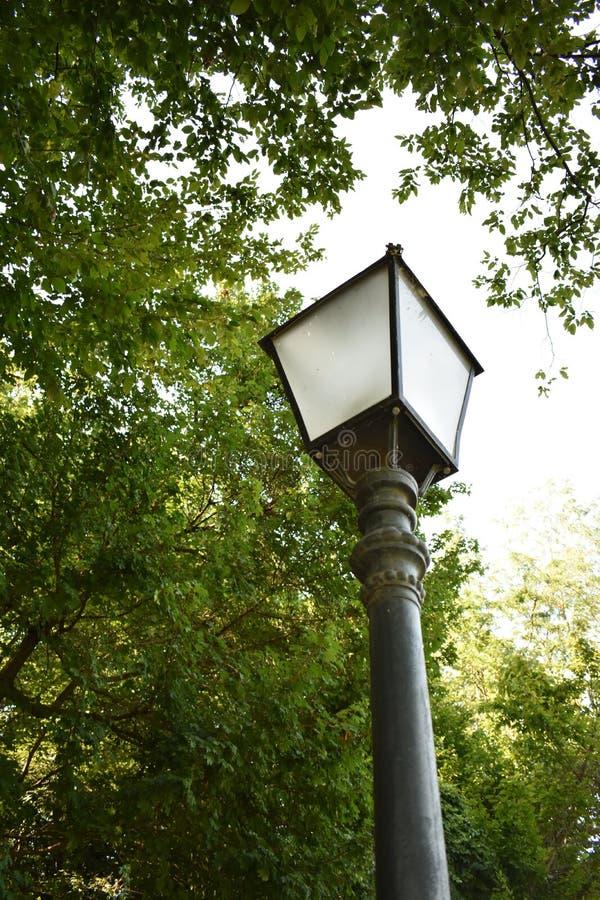 Vecchia lampada nel parco di Maksimir fotografia stock libera da diritti