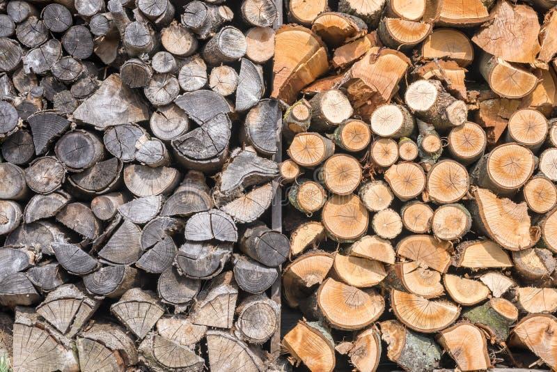 Vecchia legna da ardere bagnata in confronto secca e fresca parallelamente fotografia stock