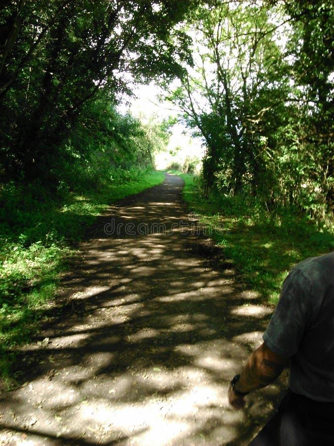 Vecchia linea ferroviaria, Hunwick fotografia stock