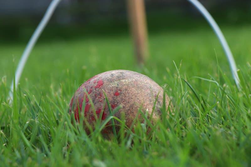 Vecchia palla di legno rossa del cricket domestico e barriera e gioco di plastica bianchi più Erba ideale per il cricket fantasti immagine stock