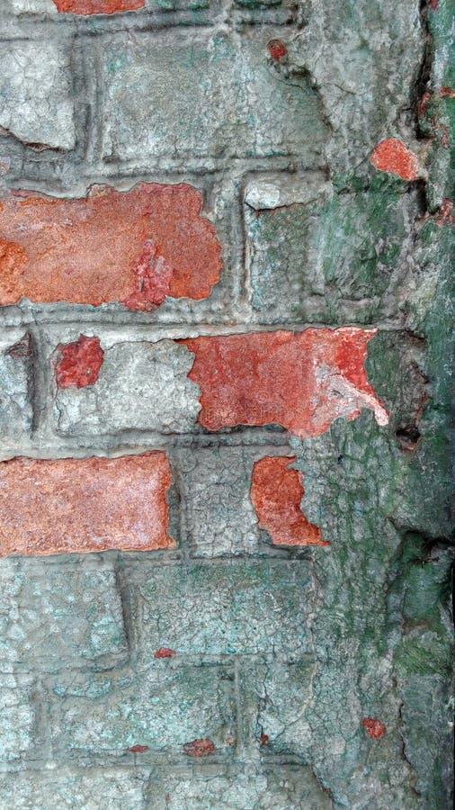Vecchia parete del colorfull immagine stock libera da diritti