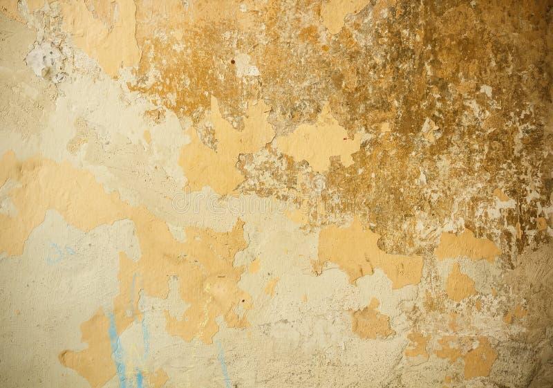 Vecchia parete del gesso fotografia stock libera da diritti