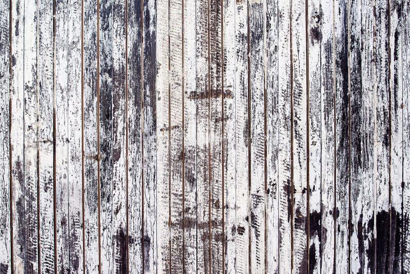 Vecchia parete di legno rustica della plancia dipinta bianca fotografie stock