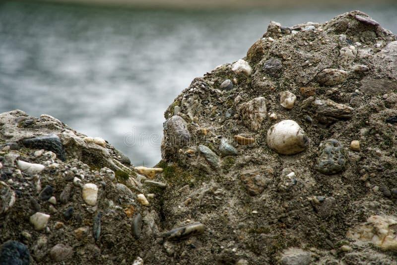 Vecchia parete di pietra con l'edera così backgroundgreen muschio sulla parete immagini stock libere da diritti