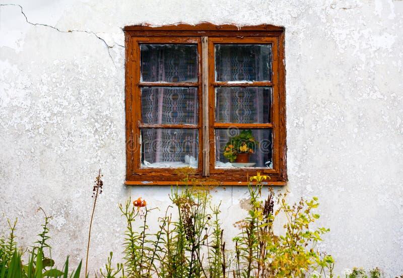 Vecchia parete di vista del giardino della finestra selvaggia immagine stock libera da diritti