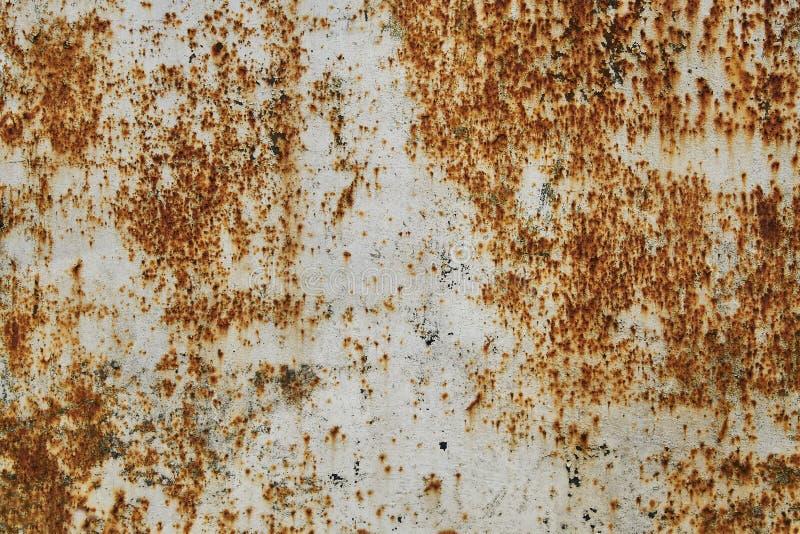 Vecchia parete dipinta bianca con struttura della ruggine Grunge ha arrugginito priorit? bassa del metallo Macchie della ruggine fotografie stock