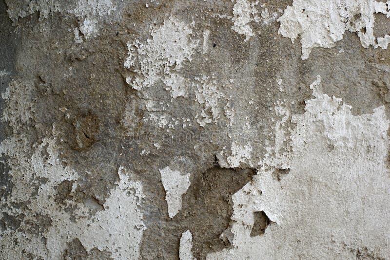 Vecchia, parete dipinta grungy sporca del gesso fotografie stock
