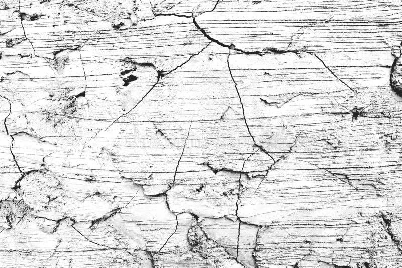 Vecchia parete o pavimento di calcestruzzo incrinata del cemento Ambiti di provenienza e concetto di strutture fotografia stock