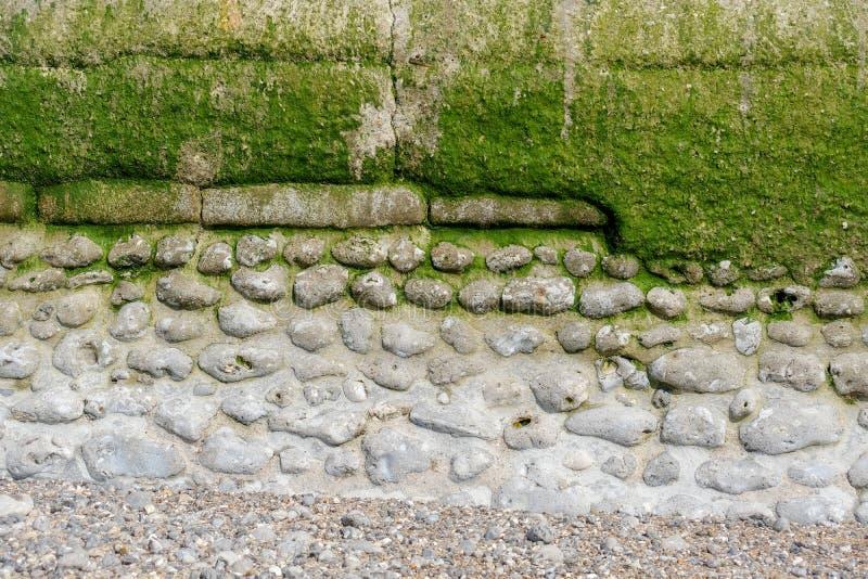 Vecchia parete stagionata decorativa dal mare in Normandia, pietra in calcestruzzo della parte, sezione, con le alghe ed il musch immagini stock libere da diritti