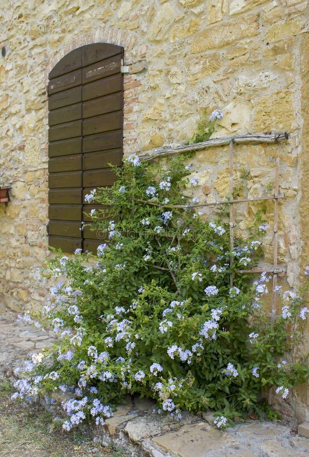 Vecchia parete toscana con la finestra ed i fiori fotografie stock libere da diritti