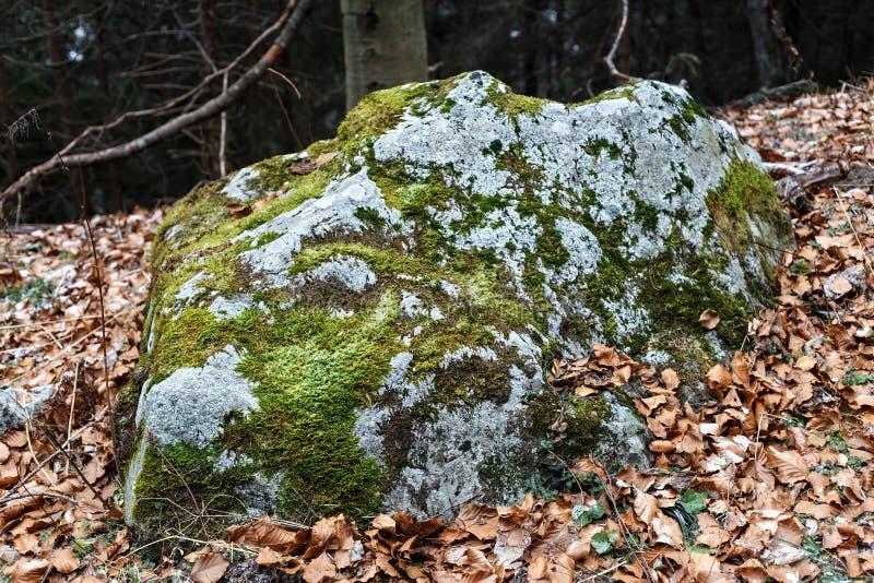 Vecchia pietra antica coperta di muschio fotografia stock libera da diritti