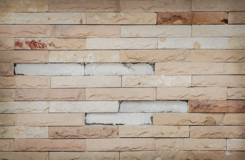 Vecchia pietra marrone della sabbia di struttura decorativa sul muro di cemento con il piccolo geco per fondo fotografie stock