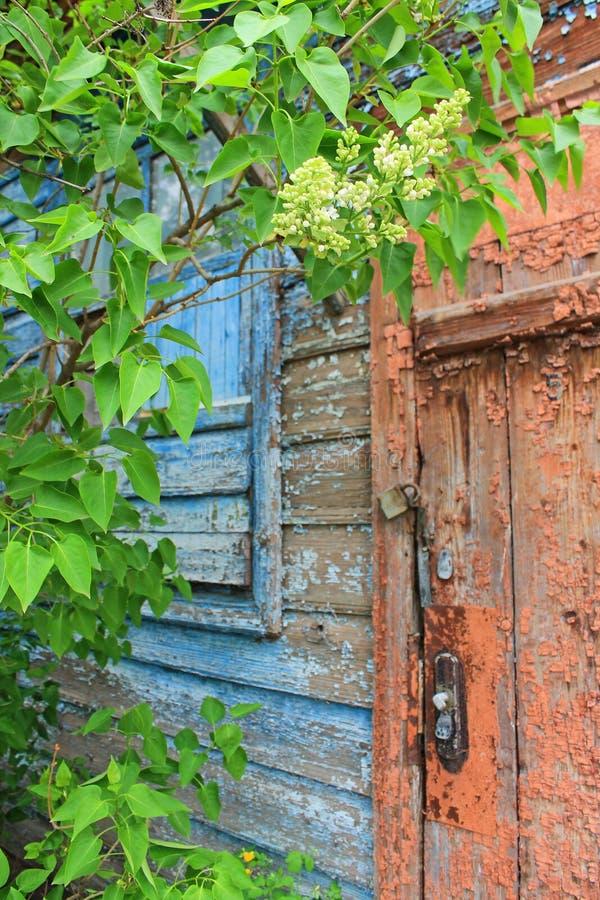 Vecchia porta con la pelatura pittura e della parete di una casa di legno fotografia stock