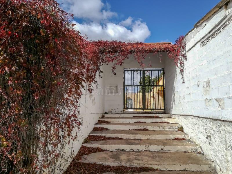 Vecchia porta di accesso con le pareti bianche immagine stock