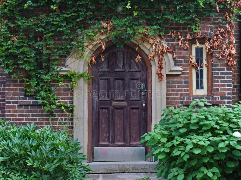 Vecchia porta di legno circondata dalle viti fotografia stock