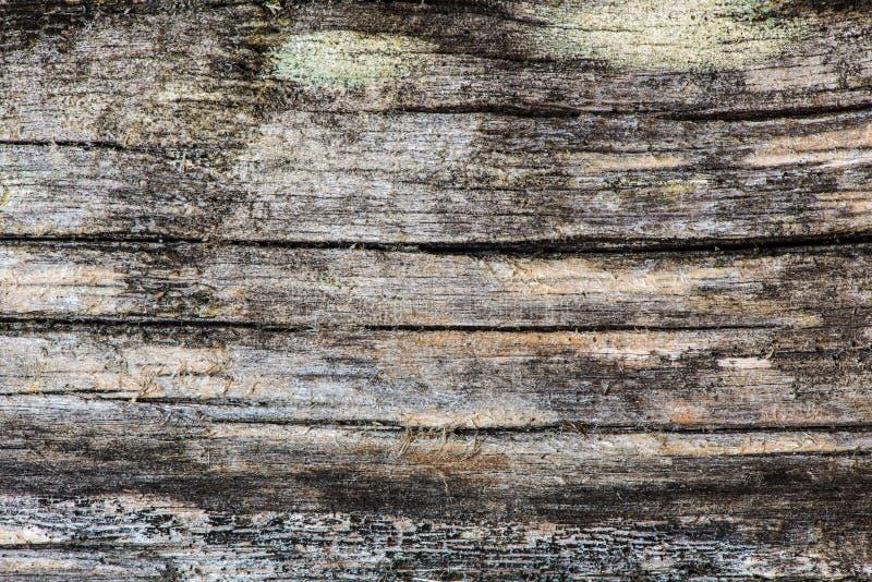 Vecchia priorità bassa di legno fotografie stock