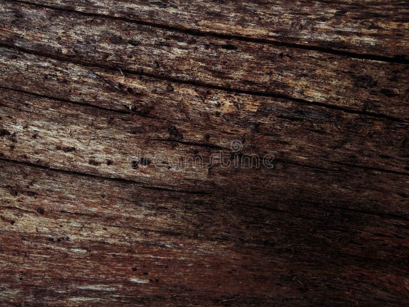 Vecchia priorità bassa di legno Struttura di uso del legno della corteccia come sfondo naturale fotografie stock libere da diritti