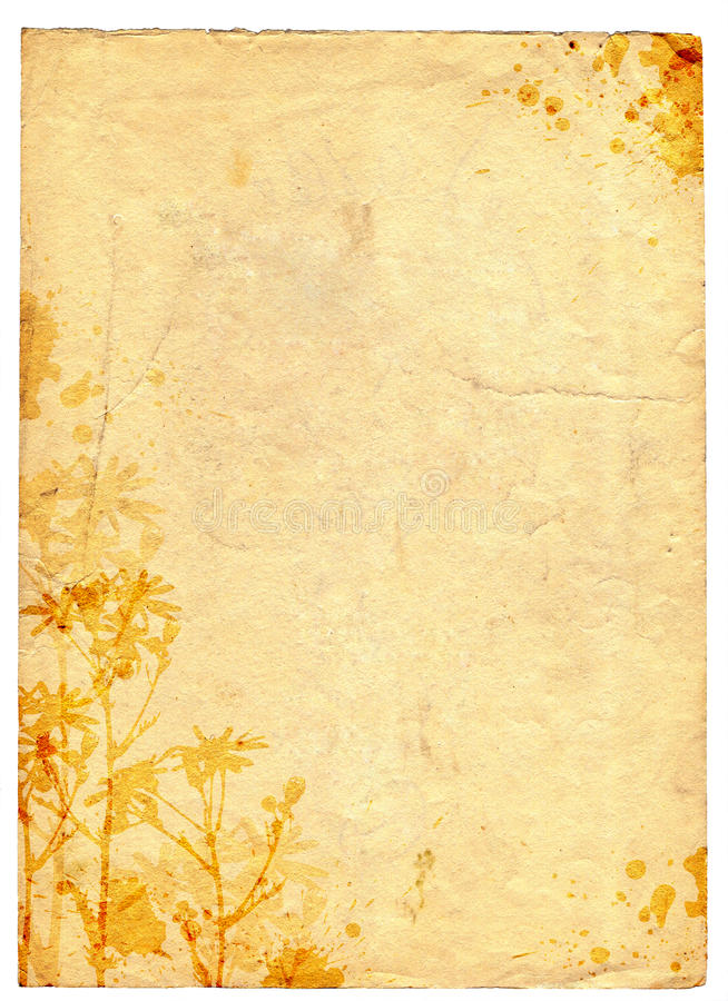 Vecchia priorità bassa floreale di carta di Grunge royalty illustrazione gratis