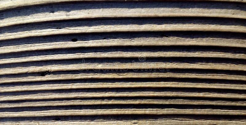 Vecchia priorit? bassa di legno di struttura Fine sugli ambiti di provenienza di legno Natura del primo piano Fotographia a macro immagini stock libere da diritti