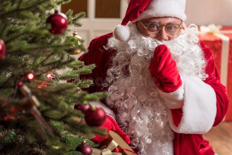 Vecchia Santa felice che mette l'albero di Natale di sotto attuale fotografie stock libere da diritti