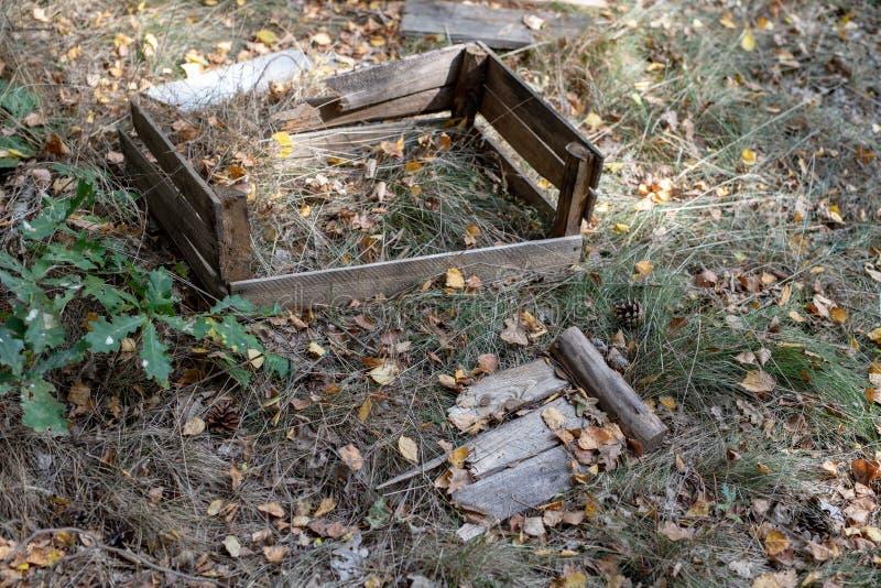 Vecchia scatola di legno per frutta nei boschetti Contenitore rotto per la t fotografie stock libere da diritti