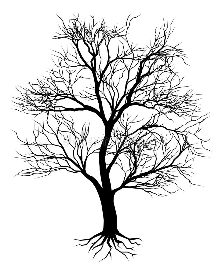 Vecchia siluetta disegnata a mano dell'albero illustrazione vettoriale