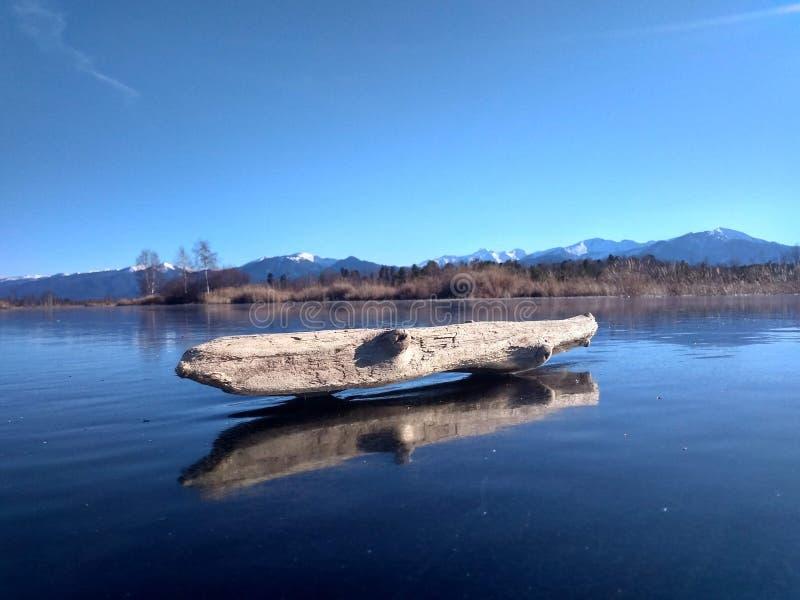 Vecchia smagliatura sulla palude del ghiaccio immagini stock libere da diritti