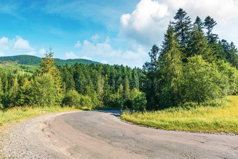 Vecchia strada campestre attraverso la foresta in montagne fotografie stock libere da diritti
