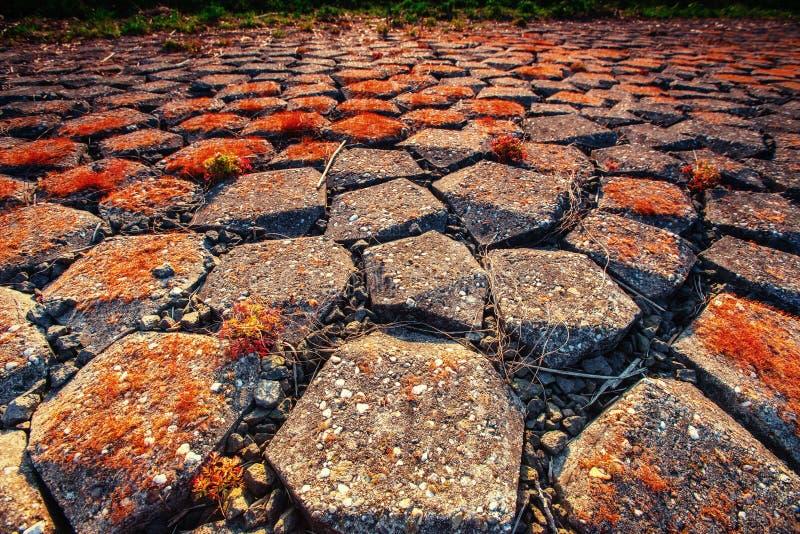 Vecchia strada di pietra Carpatico, Ucraina, Europa carpathians l'ucraina europa fotografia stock